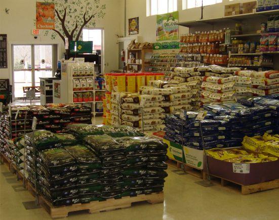 Store_5