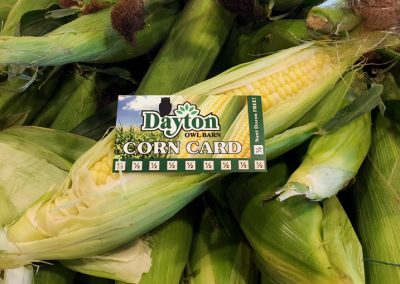corn card_reduced