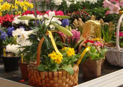 EasterFlowersGreenhouse_web_dn