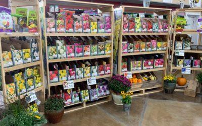 New Stock, Bulbs, Pumpkins & More!