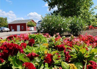 ParkingLotIsland_summer_2021_web